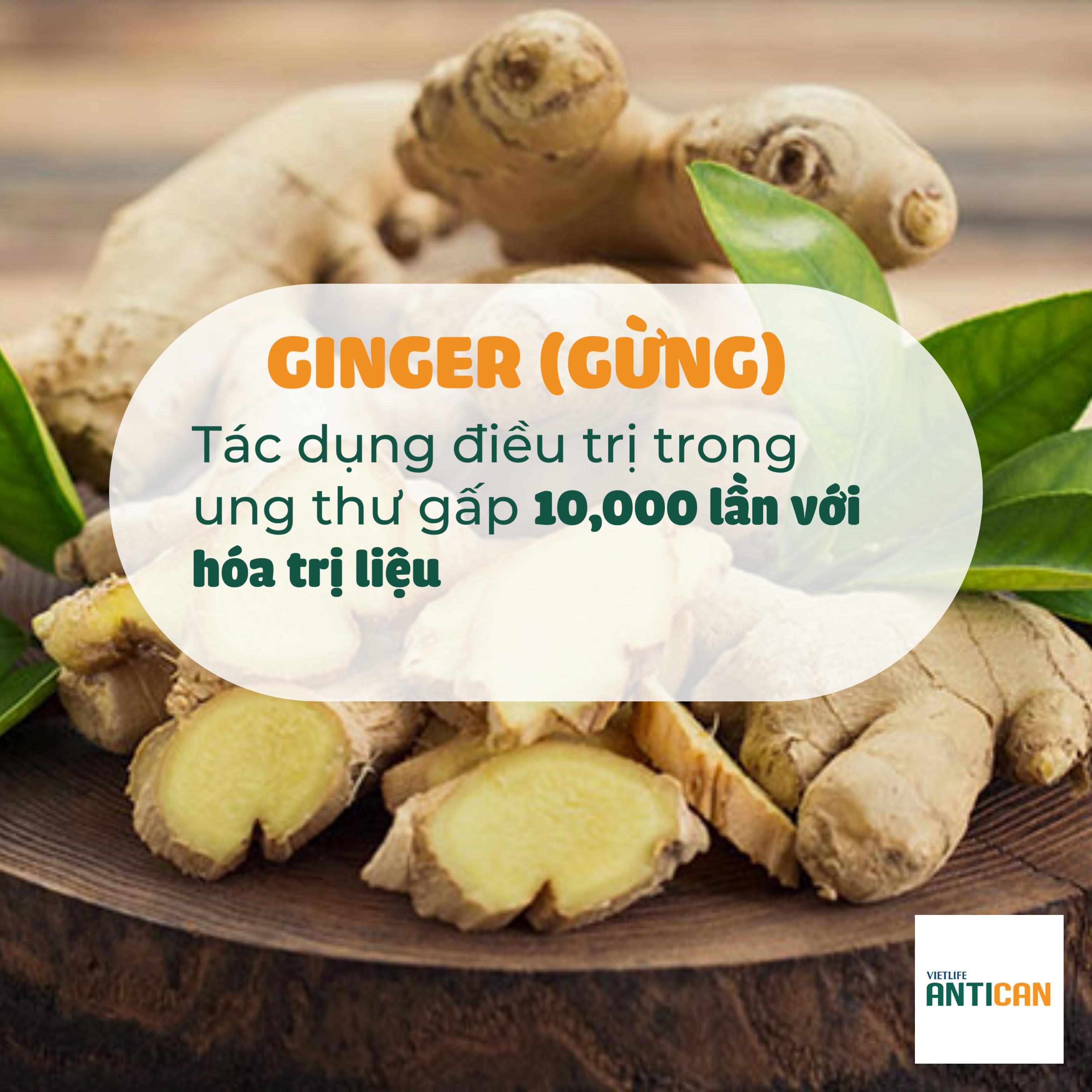 Nano Ginger NDN là hoạt chất có khả năng kiểm soát các vấn đề ung thư hiệu quả